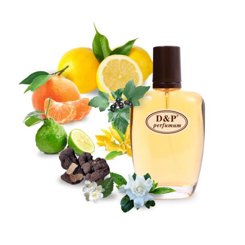 D&P T-05 Нішева парфумерія